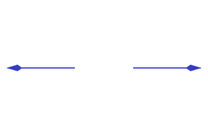 Bayside Bull Catering